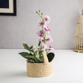 Unravel India Ceramic Basket Off-white Table Top Planter