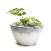 Craftsvilla Conical Design Frosted Finish Stone Bowl With Grey Accents