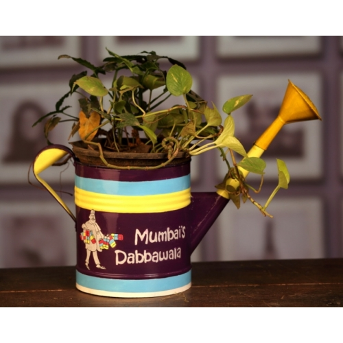 Buy Watering Can Hand Painted Planters Pot Or Exquisite